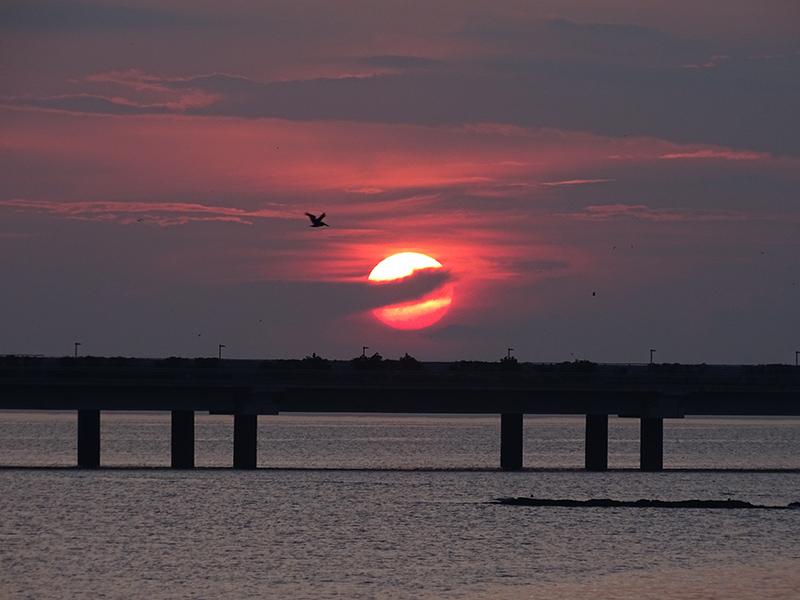 Sunrise at Casco Viego, Panama, September 27, 2015, Photo by Jason Gilliam